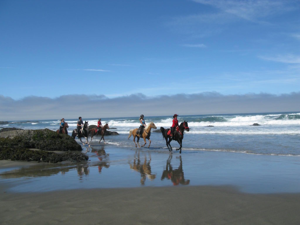 Horseback riding on Pacific coast