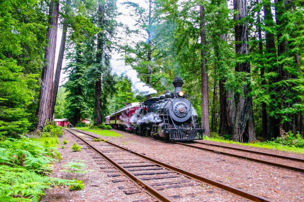 The Skunk Train of Mendocino County