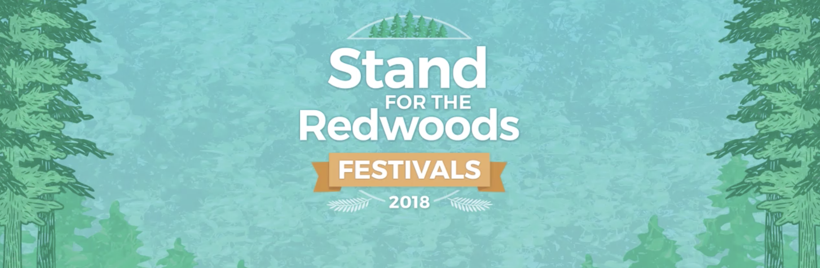 100 Years of Protecting the Redwoods